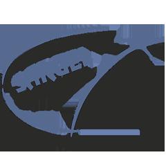 SARUEL